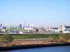 荒川(扇大橋)から見た朝の富士山